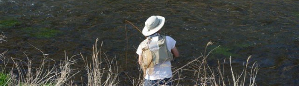 Fly Fishing Paradise