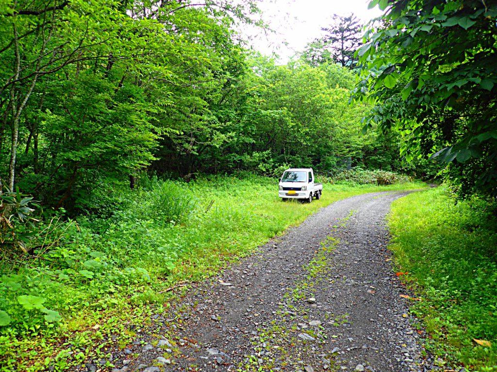 若干不安は残るものの、これと云った不満も無く林道を疾駆する。荷物の少ないFFなら、二人でも十分のキャパシティである。