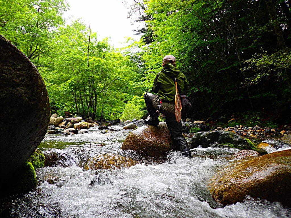 若干増水した溪谷は清々しい。輝ける6月最終週の至福。