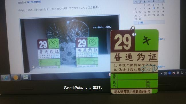 DSC_1282